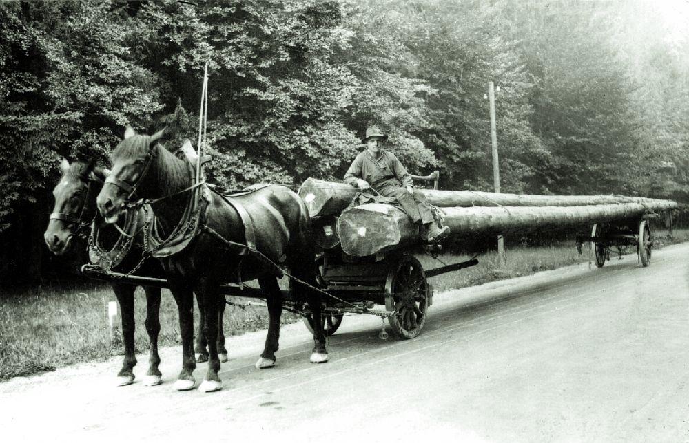 16 Langholzfuhrwerk um 1890 | Burschenverein Sauerlach